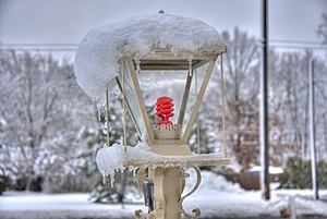 Yard Lamp Stock Photos - Image: 3973093