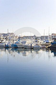 Marine Ii Stock Image - Image: 3994281