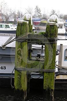 Lake Pole Stock Images - Image: 45144