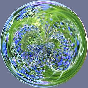 Purple Field Circle Royalty Free Stock Photo - Image: 404575