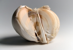 Garlic Royalty Free Stock Photos - Image: 406758