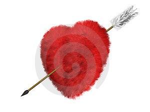 Pälsfodra Hjärta är En Uppsätta Som Mål Arkivfoton - Bild: 4001893