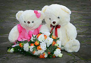 Par White Teddy Bear Stock Images - Image: 4007844