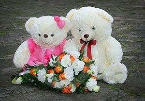 Gleichheitsweißteddybär Stockbilder - Bild: 4007844