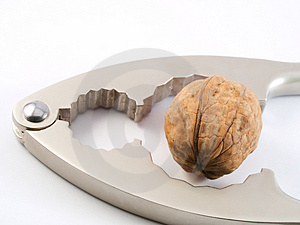 Walnut Crush Royalty Free Stock Photo - Image: 4029775