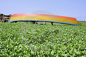 Boat Lying Upside Down In Garden Stock Images - Image: 4031394