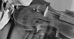 Violin Musician Royalty Free Stock Images - Image: 4039529