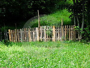 Fence In Nature Royalty Free Stock Photo - Image: 4054285