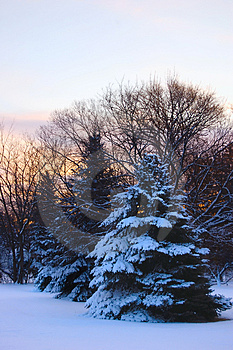 Winter Morning Sunrise Royalty Free Stock Image - Image: 4079066