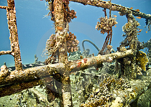 Wreck Royalty Free Stock Image - Image: 4081786