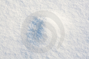 Fresh snow Royalty Free Stock Photo