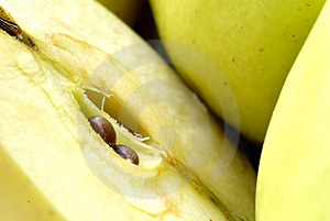 Apples Golden Delicious Stock Photography - Image: 4100062