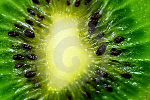 Kiwi Background Royalty Free Stock Image - Image: 4106926