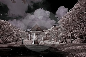 Shelter, Tree And Cloud In The Park Royalty Free Stock Image - Image: 4110716