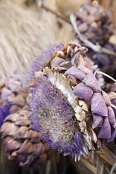 Flowers Stock Photo - Image: 4111640