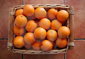 Oranges Royalty Free Stock Photo - Image: 4146425