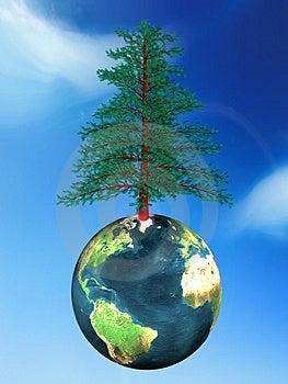 Tree And Globe Stock Photo - Image: 4172730