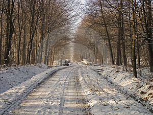 Long, Long Way. Royalty Free Stock Image - Image: 4173406