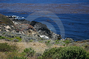 Big Sur Fotografia Stock - Immagine: 4185670