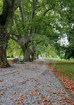 Park during Autumn Stock Photo
