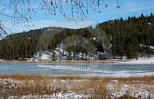 Frozen Pond 2 Stock Photography - Image: 429832