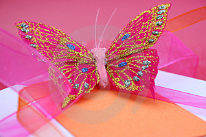 Butterfly Gift Stock Photos - Image: 4221893