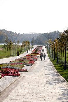 Walking Stock Images - Image: 4223384