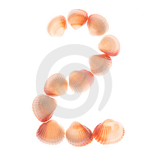 Shell Number 2 Royalty Free Stock Images - Image: 4235189