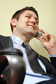 Handsome Executive Royalty Free Stock Images - Image: 4273099
