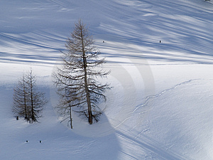 Snowy Landscape Royalty Free Stock Images - Image: 4278219