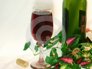 Solo glass of red wine and wine bottle amongst ivy leaves.