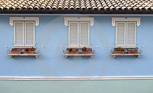 Three Windows With Cranesbills Stock Photography - Image: 4309612