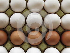Eggs Stock Photo - Image: 43000482