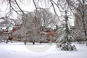 Boston Winter Royalty Free Stock Image - Image: 4353226