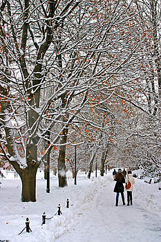 Boston Winter Royalty Free Stock Photography - Image: 4381257
