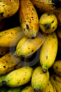 Ripe Bananas Royalty Free Stock Image - Image: 4387086
