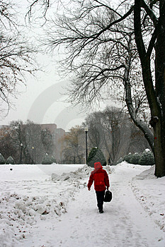 Boston Winter Stock Photo - Image: 4423660