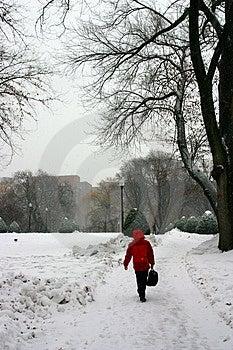 Boston Winter Stock Photo - Image: 4423660