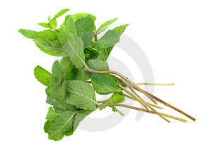 Fresh mint herb Stock Photo