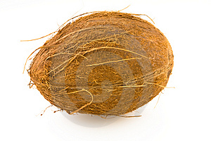 Coconut Royalty Free Stock Photography - Image: 4454367