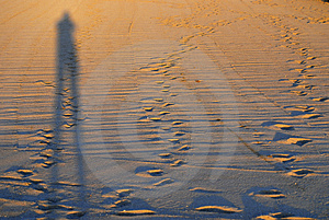 Shade On A Beach Stock Images - Image: 4455704