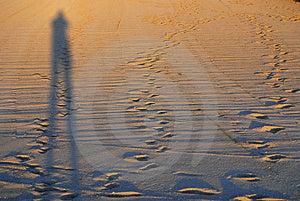 Ombre Sur Une Plage Images stock - Image: 4455704