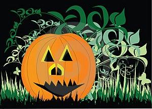 Pumpkin Royalty Free Stock Images - Image: 4467259