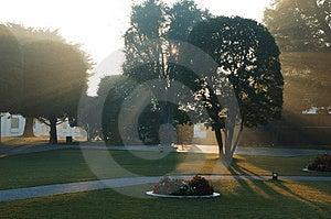 Солнечний свет утра Стоковая Фотография RF - изображение: 4483707
