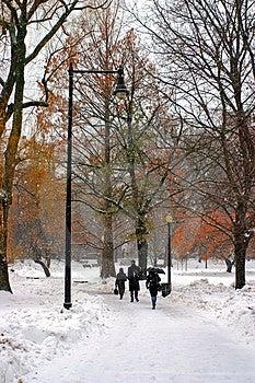 Boston Winter Stock Photography - Image: 4489892