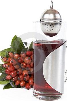 Rosehips Herbaciani Obraz Royalty Free - Obraz: 4504256