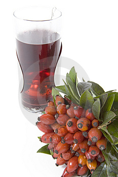 Чай Rosehips Стоковое Изображение - изображение: 4504261