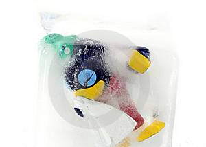 Frozen Penguin Stock Photography - Image: 4525332