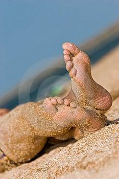 Sandy Foot Stock Photos - Image: 4549673