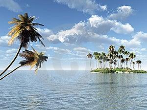 Palm Island Stock Images - Image: 4553304